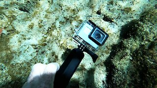 Scuba diver finds someone's functioning GoPro in Mexico