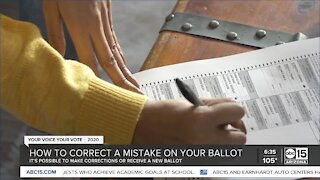 How to correct a mistake on your ballot