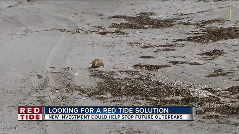 Governor Scott allocates $2.2 million to expand Mote Marine red tide relief efforts