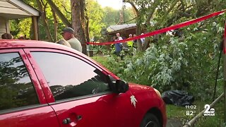 19 people injured after a tree falls on a garage in Pasadena