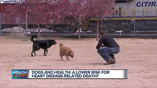 Dogs and health: A lower risk for heart disease-related death? - Video