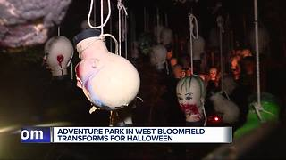 Metro Detroit Halloween crowds head to The Adventure Park's Haunted Forest - Video
