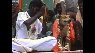 Man Marries Dog - Video