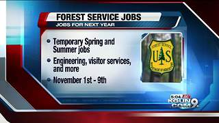 Forest Service accepting applications for temporary jobs - Video