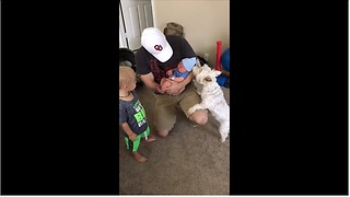 Dog meets newborn baby, steals his hat - Video