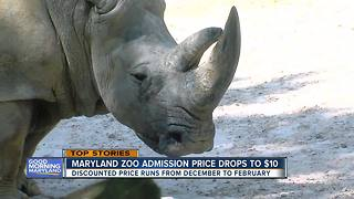 Maryland Zoo to change ticket prices for winter - Video