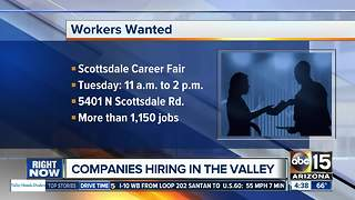 Looking for work? Check out these Valley career fairs - Video