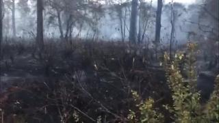 Digital Short: Brush fire in Pasco - Video