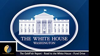 The GoldFish Report No 628- Week 201 POTUS Report: The Road Less Traveled
