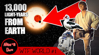 We Found Tatooine! And Other Outrageous Stories | WTF World #1