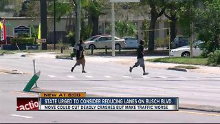 Local transportation leaders urge FDOT to consider reducing lanes on E. Busch Blvd. - Video