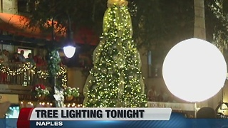 Naples tree lighting ceremony - Video