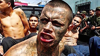 10 Most Dangerous Gangs On Earth - Video