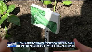 Students find joy in school gardening