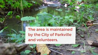The Parkville Nature Sanctuary - Video