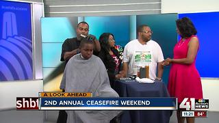Second annual Ceasefire Weekend - Video