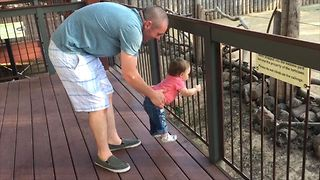 30 Cute Kids Meet Zoo Animals