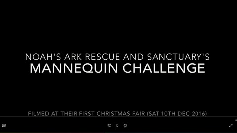 Mannequin challenge at Noah's Ark Rescue Christmas Fair