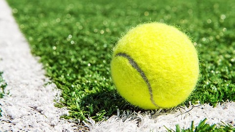Internet Can't Decide if Color of Tennis Ball is Yellow or Green. What Do You Think?