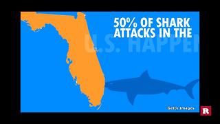 Why are shark attacks on the rise? | Rare News - Video