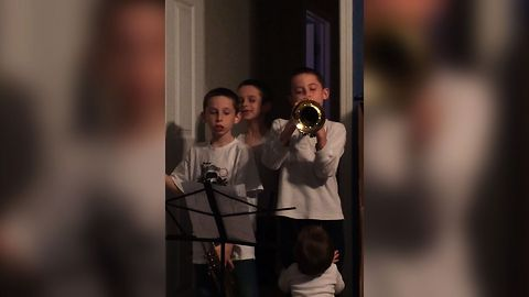 Baby Sister Says No To Trumpets