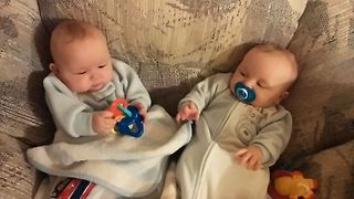 The Cutest Sibling Rivalry - Video