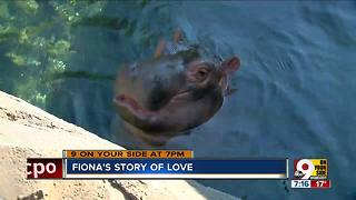 Fiona's story of love - Video