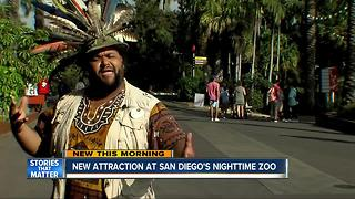 New attraction at San Diego's Nighttime Zoo - Video