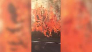 VIDEO: Hudson fire on Old Dixie Highway - Video