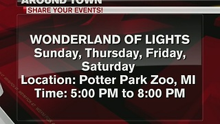 Around Town: Wonderland of Lights - Video