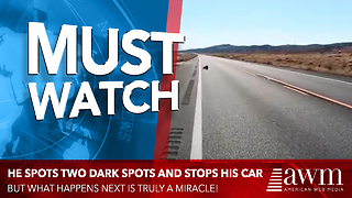 He Spots Two Dark Spots In Middle Of Road, Slams On His Brakes And Takes Action - Video