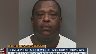 Tampa police shoot wanted man during burglary - Video