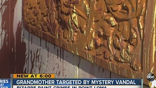 Grandmother targeted by mystery vandal - Video