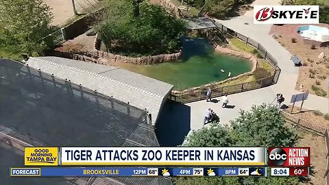 A zookeeper suffered 'lacerations and punctures' in a tiger attack at the zoo in Topeka, Kansas