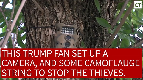 Trump Supporter Booby-Traps Trump Sign...Delivers Instant Justice To Lib Thief