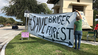 Activists fight to save forest in Palm Beach Gardens - Video