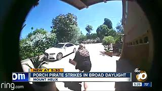 Porch pirate strikes in broad daylight - Video