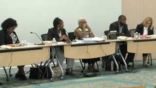 Riviera Beach council hires new interim city manager - with criminal background - Video