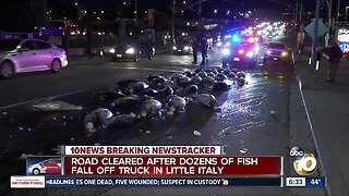 Dozens of tuna fall from delivery truck onto Little Italy street