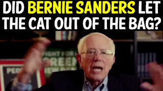 DID BERNIE SANDERS LET THE CAT OUT OF THE BAG?!