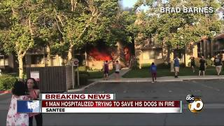 Man hospitalized trying to save dogs in apartment fire - Video