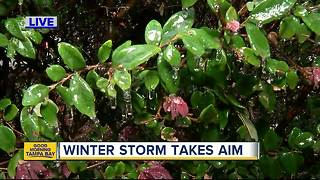 Winter storm takes aim on Florida - Video