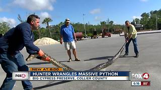 16-foot python caught in Big Cypress National Preserve