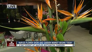 Naples Botanical Garden holds Flower Show and Garden Market
