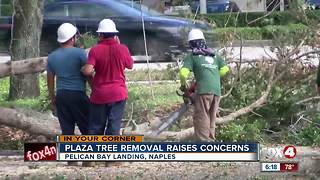 Major tree removal project at shopping plaza upsetting residents - Video