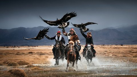 Eagle eyed! Photographer captures stunning pictures of world's last remaining Mongolian eagle keepers