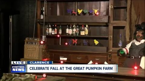 New laser shooting gallery at The Great Pumpkin Farm