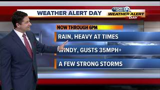 Weather Alert Day: Heavy rain at times with gusty winds - Video