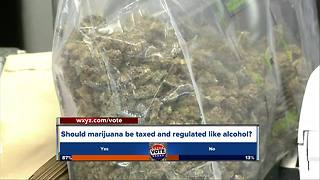Legal marijuana in Michigan may be on 2018 ballot - Video