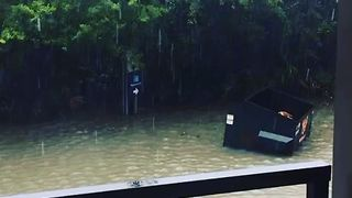 Dumpster Floats Away in Charleston Floodwaters - Video